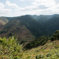 Farmland trifft auf Nationalpark: Bwindi Impenetrable National Park
